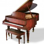 Acoustic Pianos For Sale in Michigan - Upright or Baby Grand Pianos - acoustic-image-2
